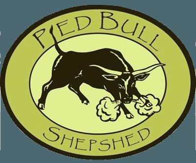 pied bull logo